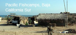 Fishcamps, Baja California Sur